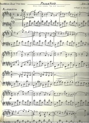 "Picture of Passepied from the opera ""Le roi s'amuse"", Delibes, arr. Galla-Rini, free bass accordion solo"